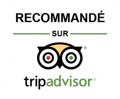 Visites guidées en vallée du Loir et en vallée de la Sarthe avec Visithemes : avis Tripadvisor
